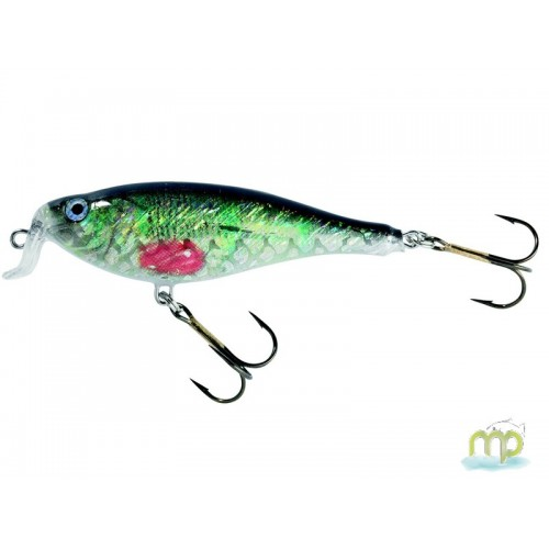 POISSON NAGEUR WOBBLER FLOATING PERCHE