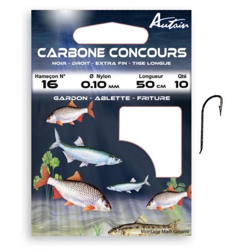 HAMECONS MONTES AUTAIN CARBONE CONCOURS